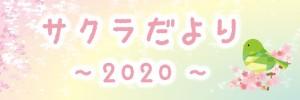 sakuradayori2020